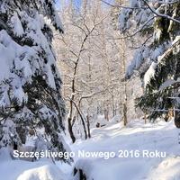 Szczęśliwego Nowego  2016 Roku