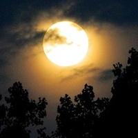 Dobrej nocy, miłych snów:)