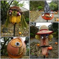Festiwal Dyni w Ogrodzie Botanicznym