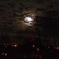 Dzisiejszy księżyc nad Malborkiem