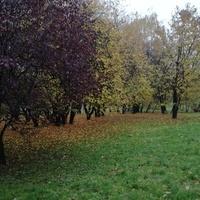 Jesień. Jaka piękna pora roku!