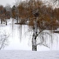 Tak wygląda zima w moim mieście