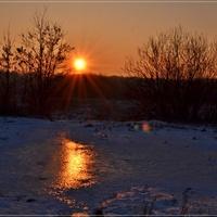 Zimowe słoneczko ...