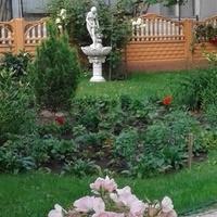Rzeźba w ogrodzie...