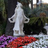 Różnokolorowe kwiaty i palma