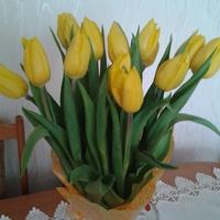 Wiosna w wazonie :)