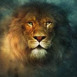 aslan555