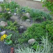 Ogródek Pod Moim Ok