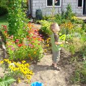 Wiejski Ogród-raj D