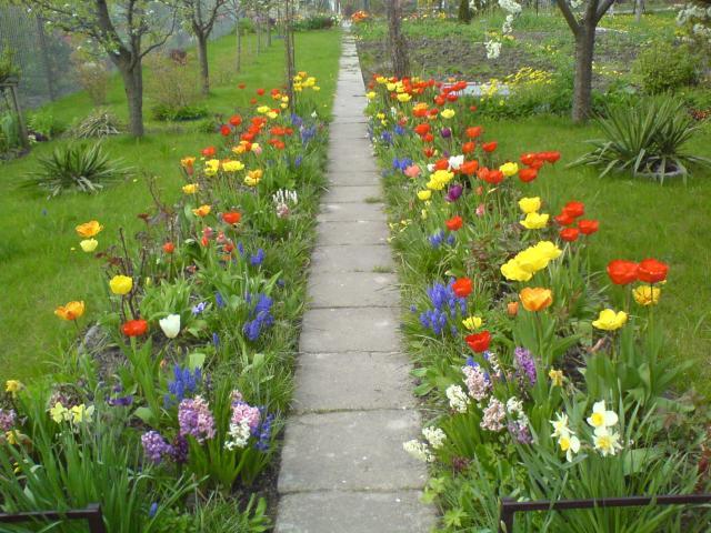 wiosna 2007