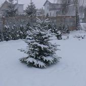 Jeszcze Zimowo
