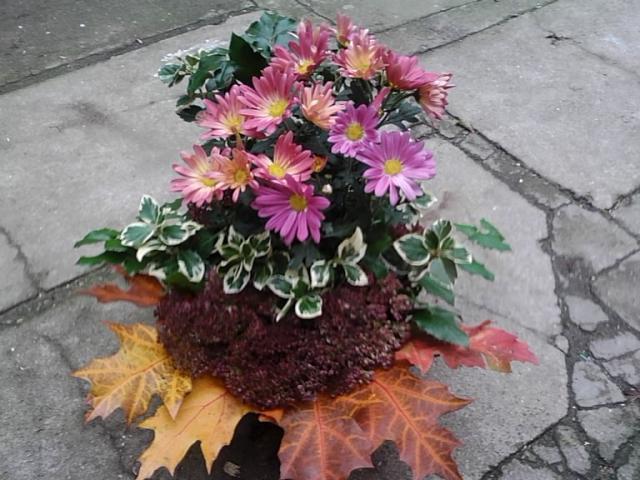 jesienna kompozycja:)