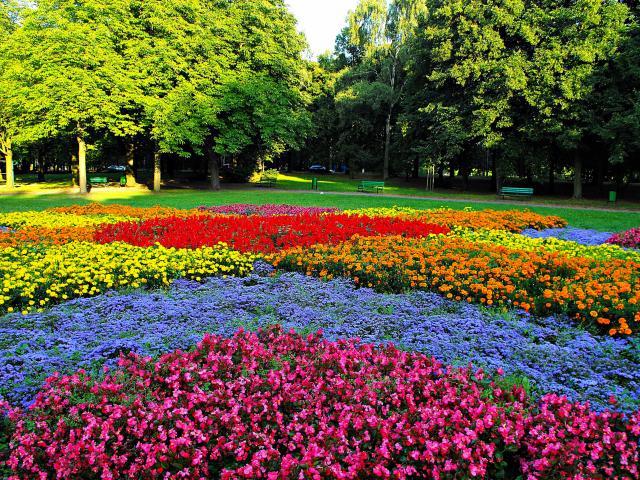 Park na Zdrowiu (Łódź)