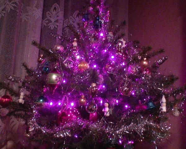 w świątecznym nastroju ........