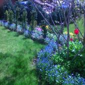 a, wiosną może będzie tak :
