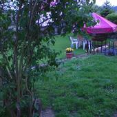 w moim ogródku wciąż wiosna