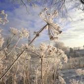 zimy uroki i widoki .....