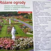 Strona z katalogu różanego - niemieckie rosaria