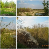 Widoki wiosenne ze Skarpy Ursynowskiej w Warszawie