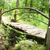 Mostek przy zdrowotnym żródełku(Polanów)