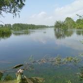 Rzeka Warta - Powódź 2010 r.