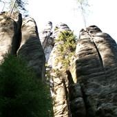 Skalne Miasto,drzewo na skale.