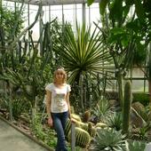 W kaktusowym raju
