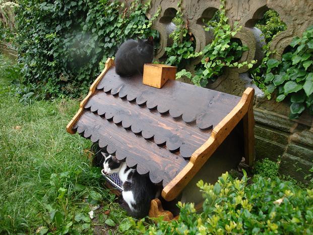 Domek dla kotków