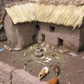I mieszkały w tym domku