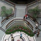 Kwiaty w Muzeum