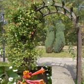 Pergola w parku chorzowskim