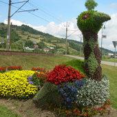 kwiatowy paw