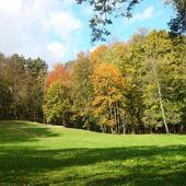 Park jesienią