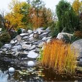 Kolory ciepłe roślin, którym liście nie opadły...