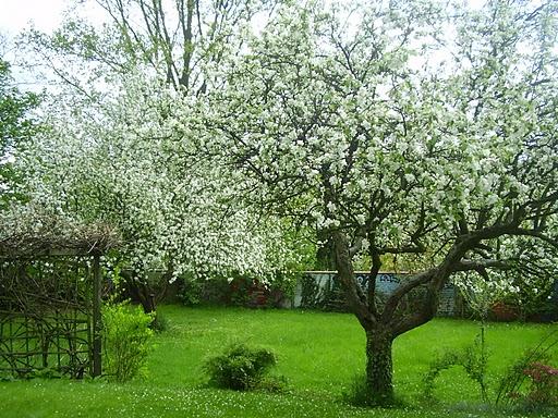 Aby do wiosny.....