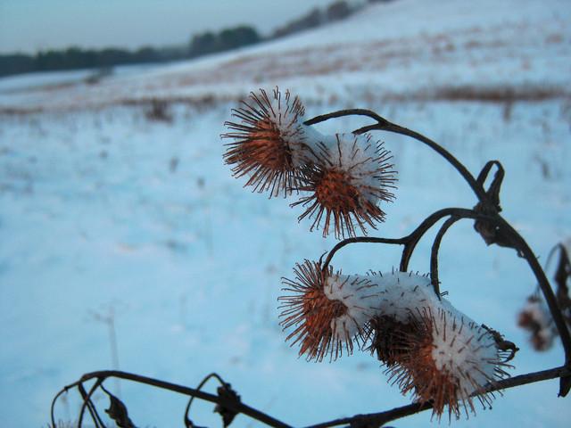 zima - wszystkich traktuje równo !