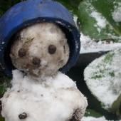 Bałwanek z pierwszego śniegu