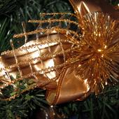 pozdrawiam świątecznie ......