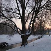 Zimowe popołudnie