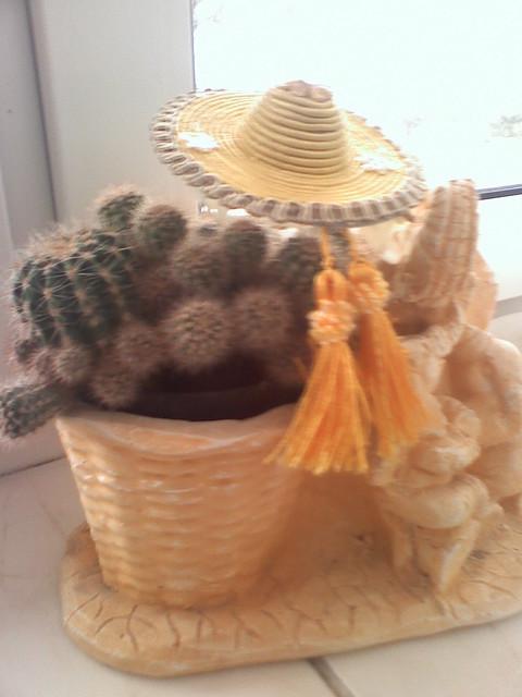 W meksykańskim  stylu !!!
