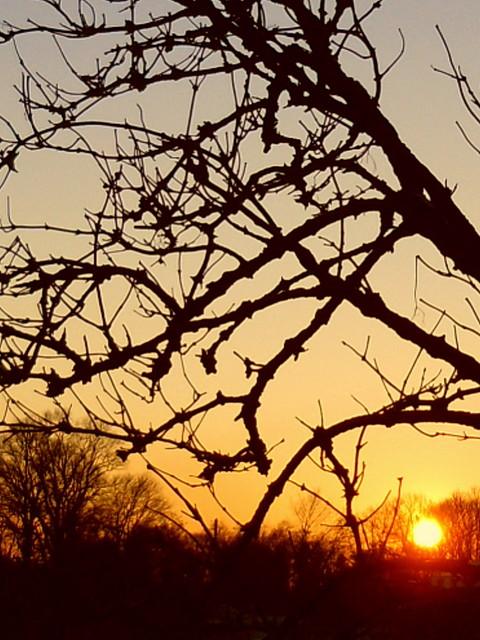 Zimowy zchód słońca-miłego wieczoru