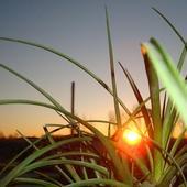 Słońca życzę na jutro