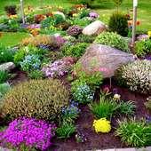 Wśród kwiatów:)