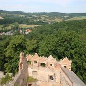 Zieleń wokół ruin Zamku Grodno