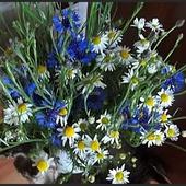 Takim bukietem polnych kwiatów , pozdrawiam Wszystkich.