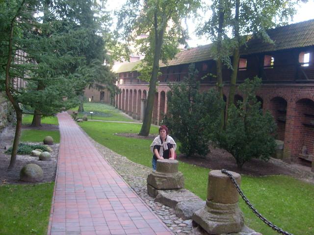 Aleja zieleni na zamku w Malborku