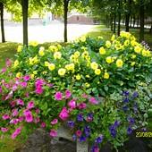 Licheń- park