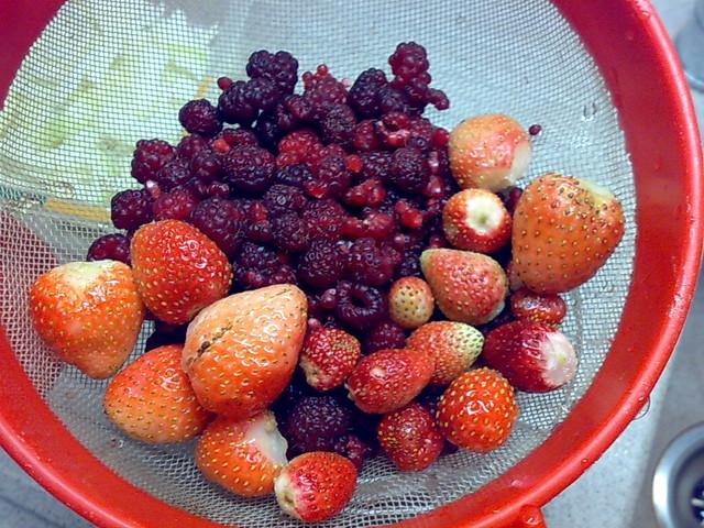 Październikowe owoce