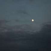 Wszystkim życzę pięknych snów i słonecznego poranka :)