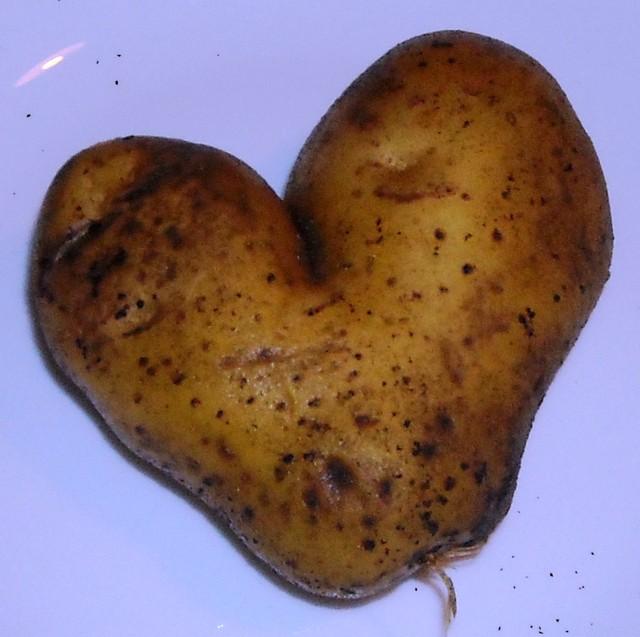 Podobno do gotowania trzeba mieć serce!!!
